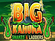 Big Kahuna Snakes And Ladders